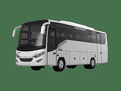sewa-bus-pariwisata-padang-medium-min